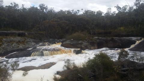 Falls of Forth